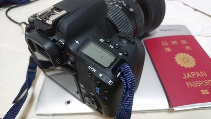 DSC_7972.JPG